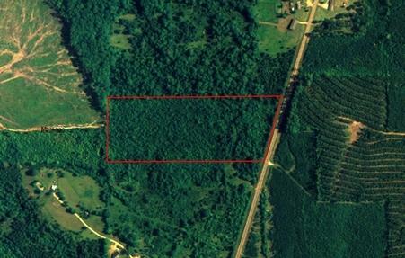 20 acres Thomaston