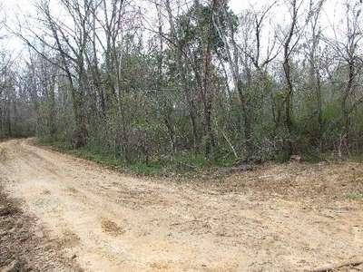 Sally Hill Road, Linden, AL 36748