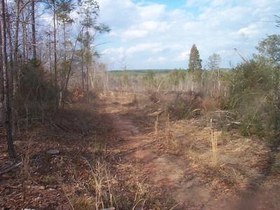 Hunting Land!