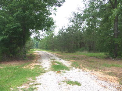 Co Rd 15 off Hwy 183, West of Marion, AL