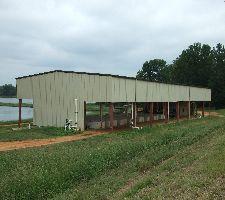 SouthFresh Catfish Farm
