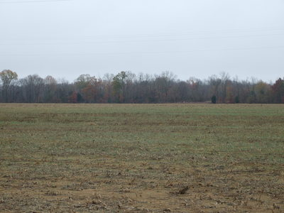 110 ac Cropland Faunsdale