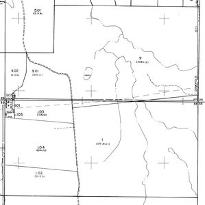 445 ac Hunting Tract near Demopolis