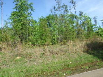 Lot south of Moundville