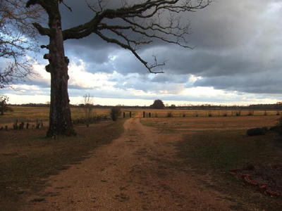 Rivercrest Plantation