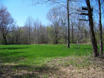 293 acres