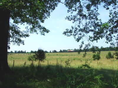 110 ac Ranch 1 mile S. of Demopolis