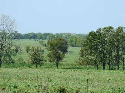 Blackbelt Ranch