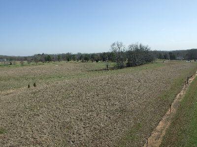 Horse Property near Demopolis
