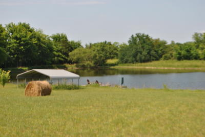 Small Ranch with Pond