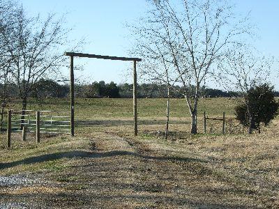 Rose Ranch