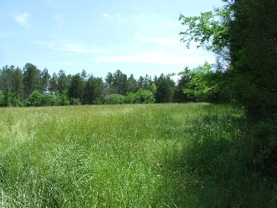South Perry Hunting Property