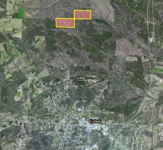 40 Acres Hunting Tract @ Eutaw