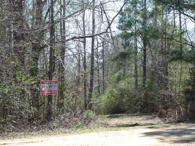 Hunting Tract 38 acres