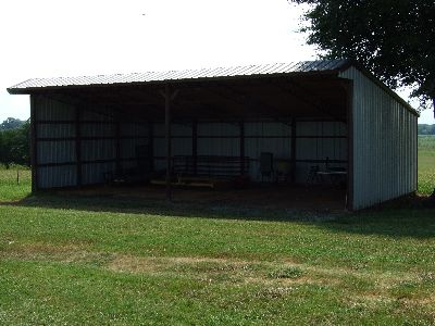 Big Prairie Farm