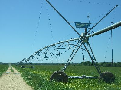 On-Going Irrigated Row Crop 1,400 ac Farm
