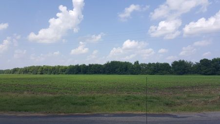 Perry County Farmland