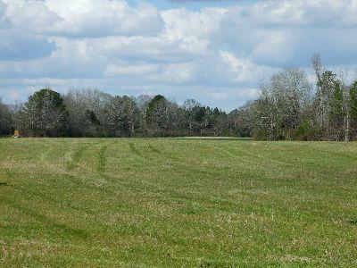 Hale County Farm/Ranch