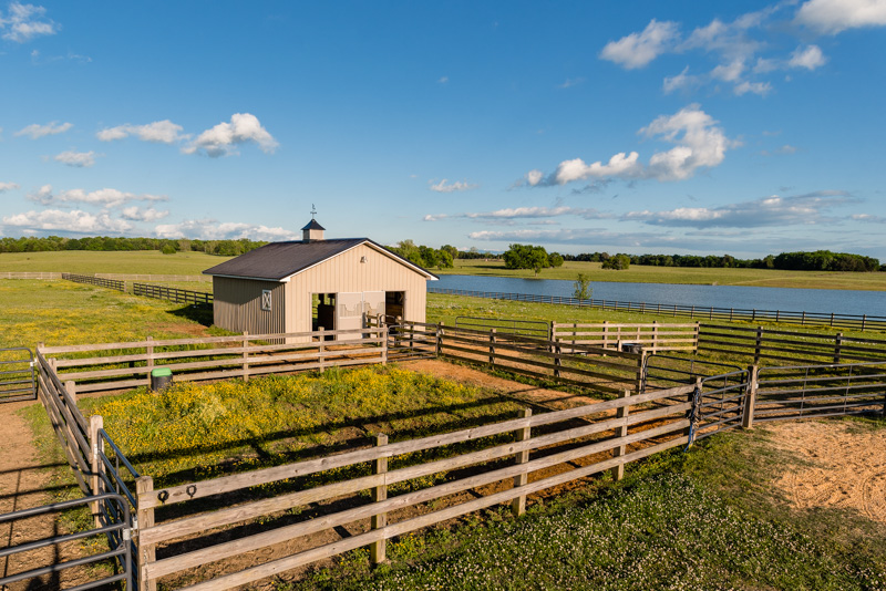 58.6 Acres Saddlelake Farm
