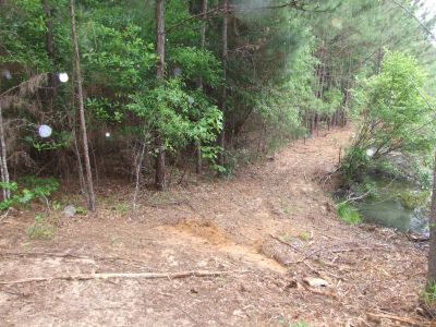 Heiberger Timber Land – 248 acres Perry County Alabama