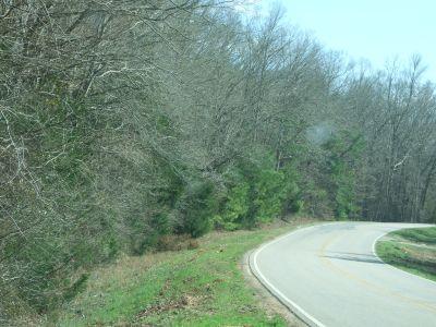 Spencer 450 ac – Timber-Hunting Land