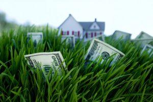 Money on the grass