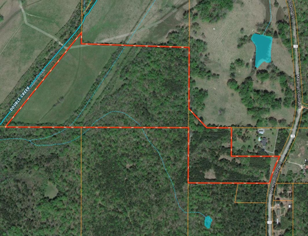 Marengo County 54+\- acres Hunting Land