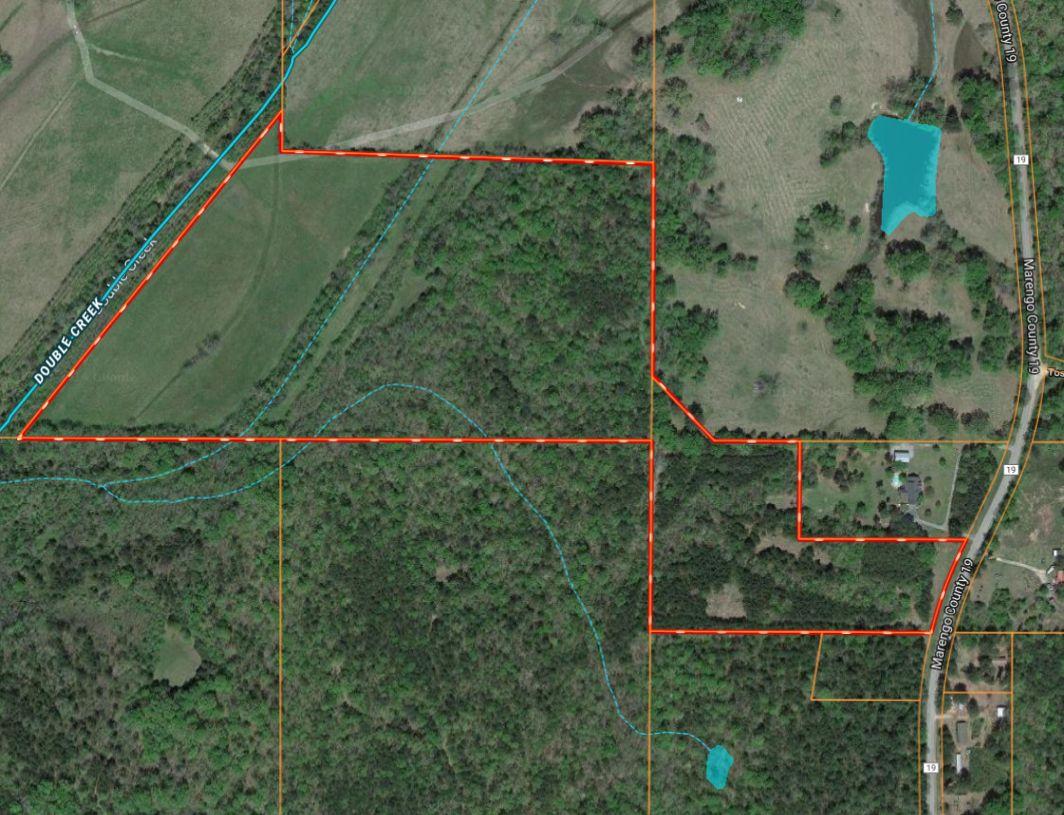 Marengo County 54+\- acres Hunting Land