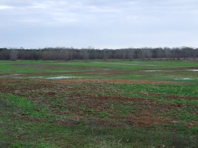 Wendell Farm – Perry County Alabama