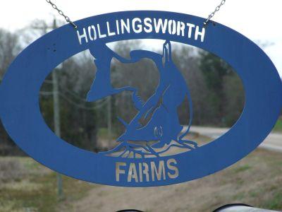 Hollingsworth Catfish Farm = 215+\- ac